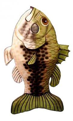 c191-fishgreen