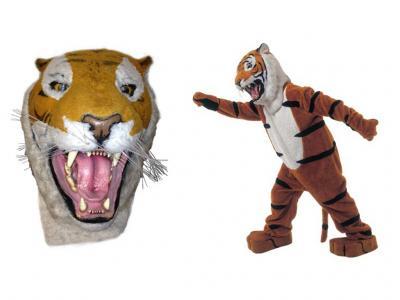 c6-tiger